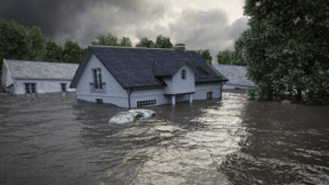 Flood Insurance Statistics — All You Need to Know (2021)